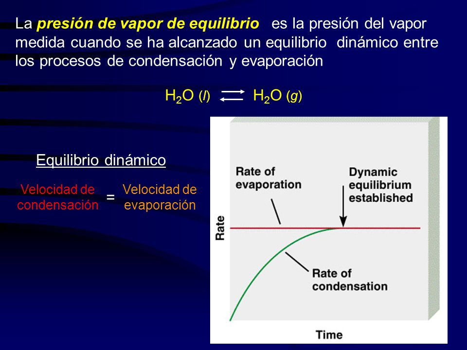 La presión de vapor de equilibrio es la presión del vapor medida cuando se ha alcanzado un equilibrio dinámico entre los procesos de condensación y evaporación