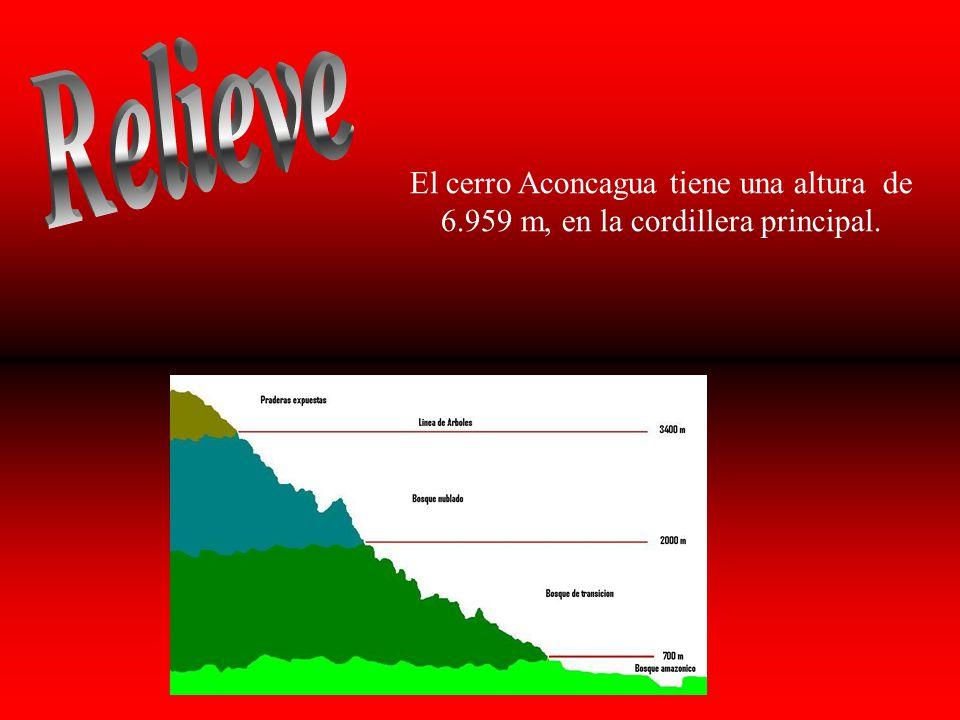 Relieve El cerro Aconcagua tiene una altura de 6.959 m, en la cordillera principal.