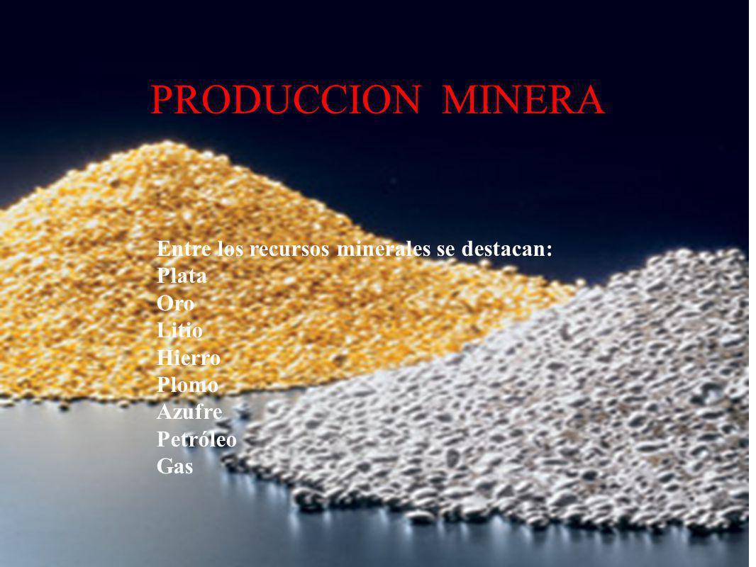 PRODUCCION MINERA Entre los recursos minerales se destacan: Plata Oro