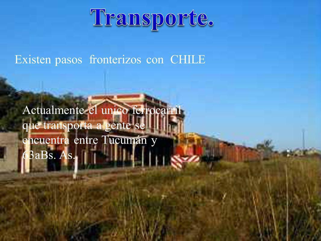 Transporte. Existen pasos fronterizos con CHILE