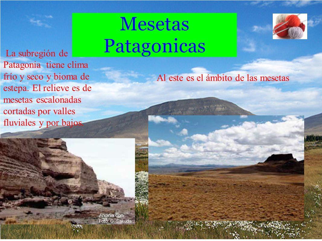 Mesetas Patagonicas