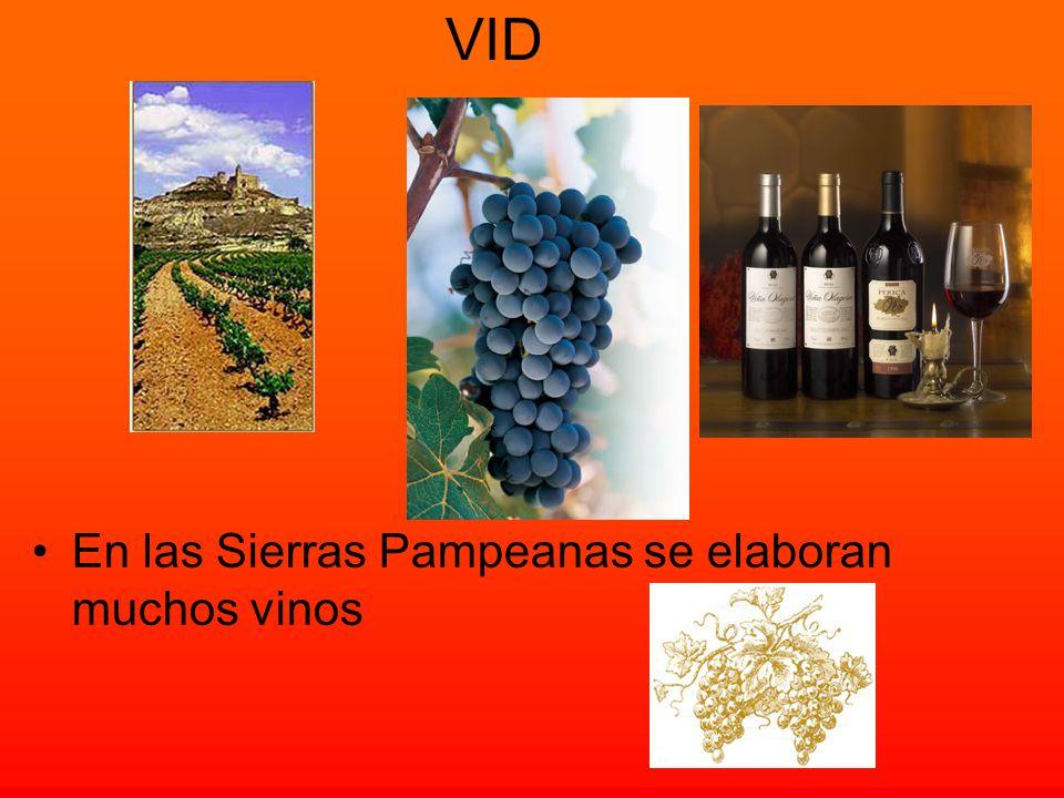 VID En las Sierras Pampeanas se elaboran muchos vinos