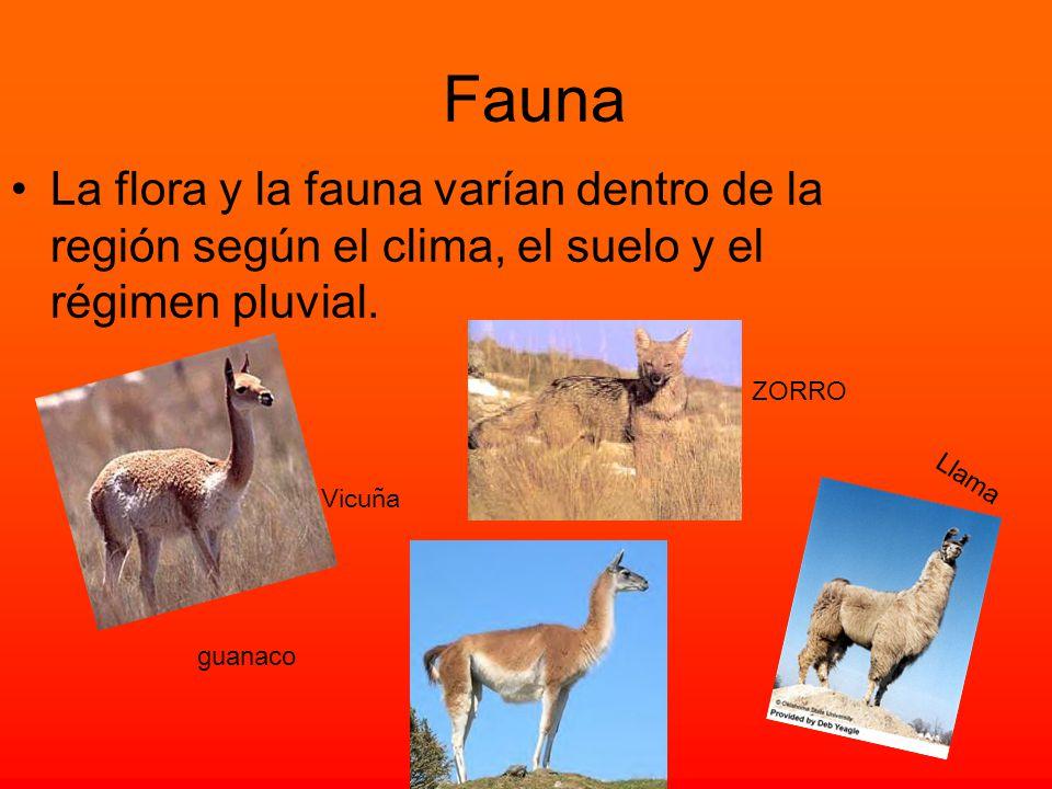 Fauna La flora y la fauna varían dentro de la región según el clima, el suelo y el régimen pluvial.