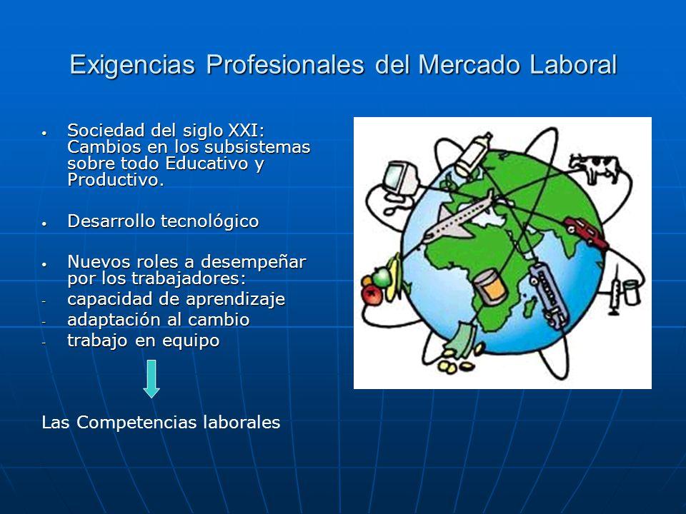 Exigencias Profesionales del Mercado Laboral