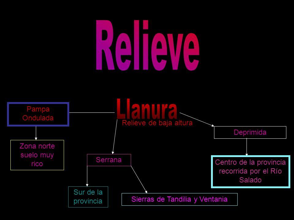 Relieve Llanura Pampa Ondulada Relieve de baja altura Deprimida