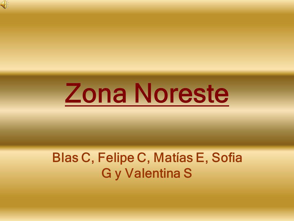 Blas C, Felipe C, Matías E, Sofia G y Valentina S