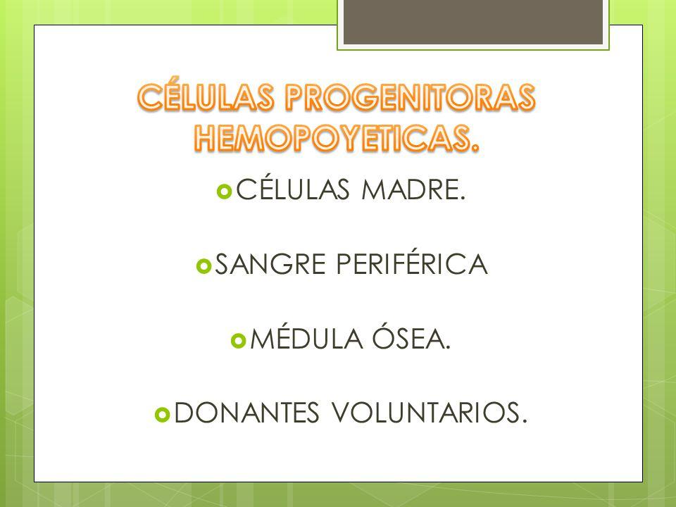 CÉLULAS PROGENITORAS HEMOPOYETICAS.