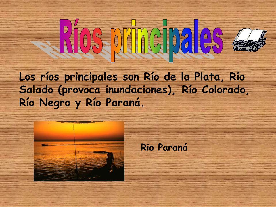 Ríos principales Los ríos principales son Río de la Plata, Río Salado (provoca inundaciones), Río Colorado, Río Negro y Río Paraná.