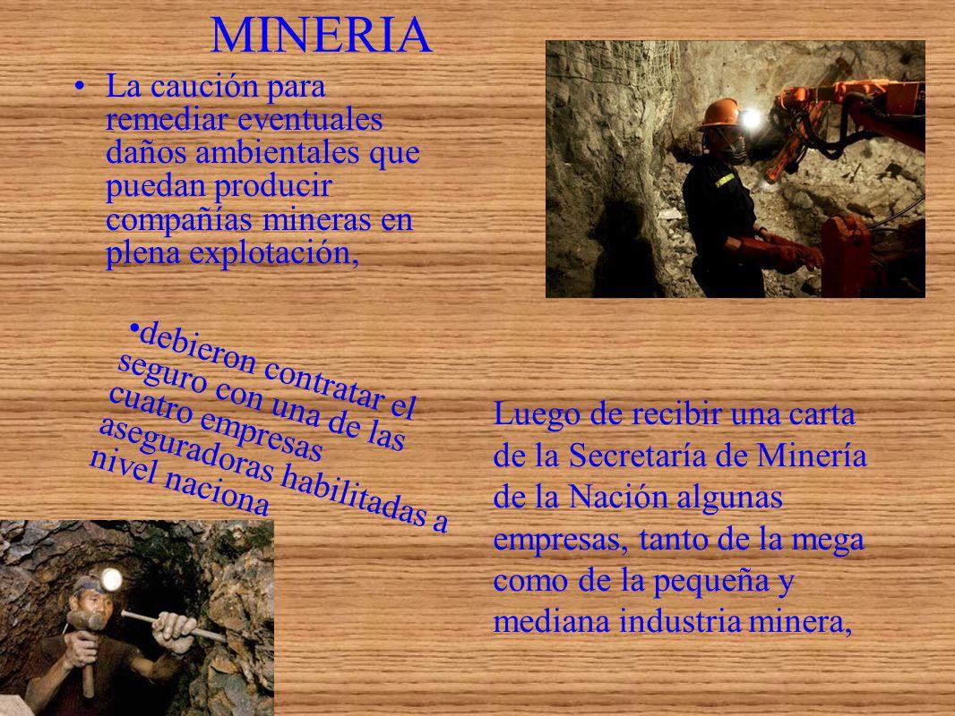MINERIA La caución para remediar eventuales daños ambientales que puedan producir compañías mineras en plena explotación,