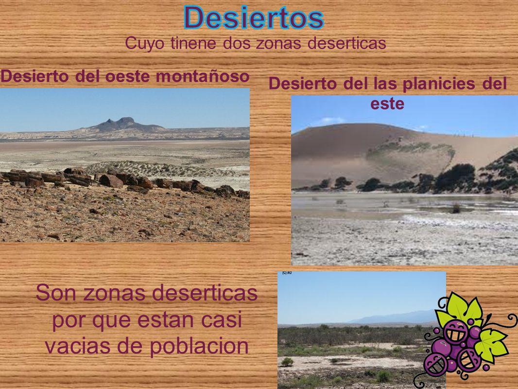 Desierto del las planicies del este