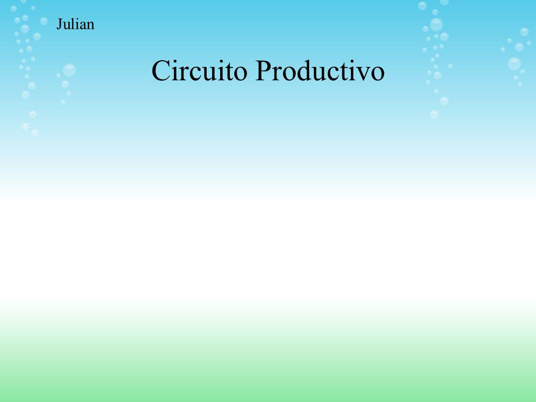 Julian Circuito Productivo
