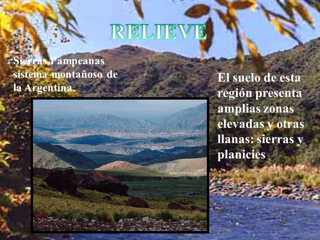 RELIEVE Sierras Pampeanas sistema montañoso de la Argentina.