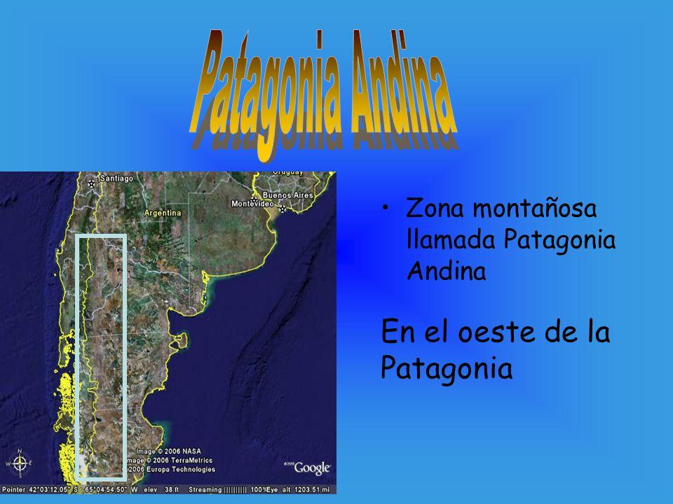 Patagonia Andina En el oeste de la Patagonia