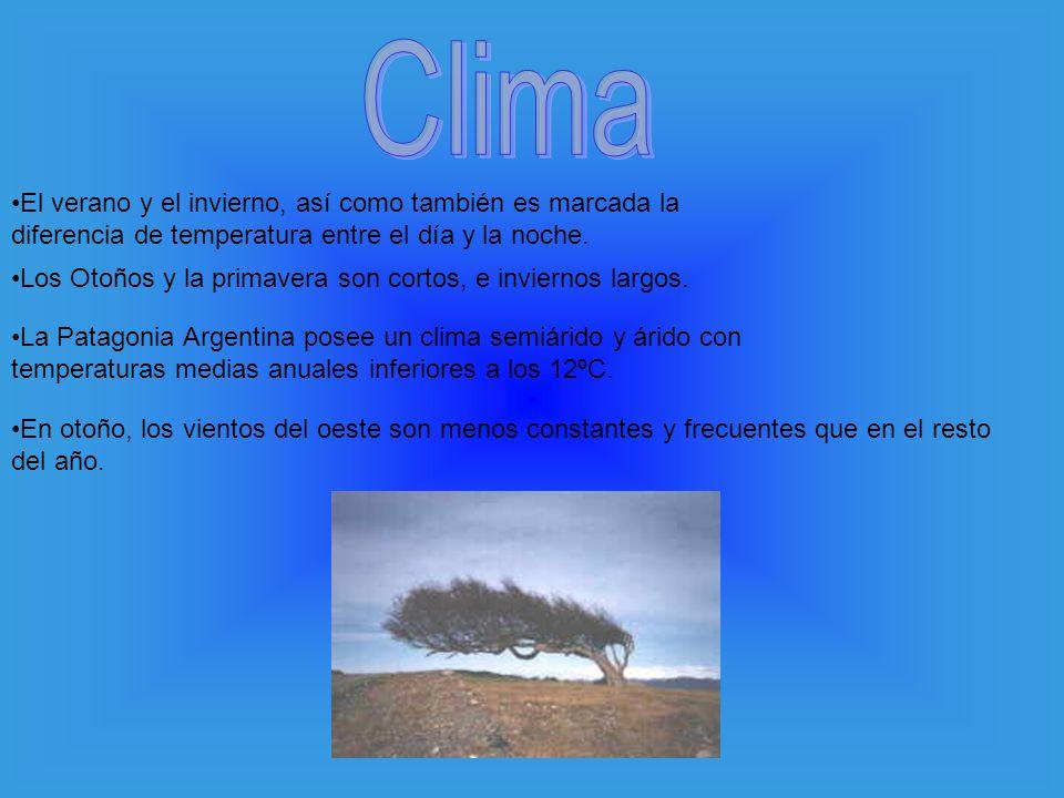 Clima El verano y el invierno, así como también es marcada la diferencia de temperatura entre el día y la noche.