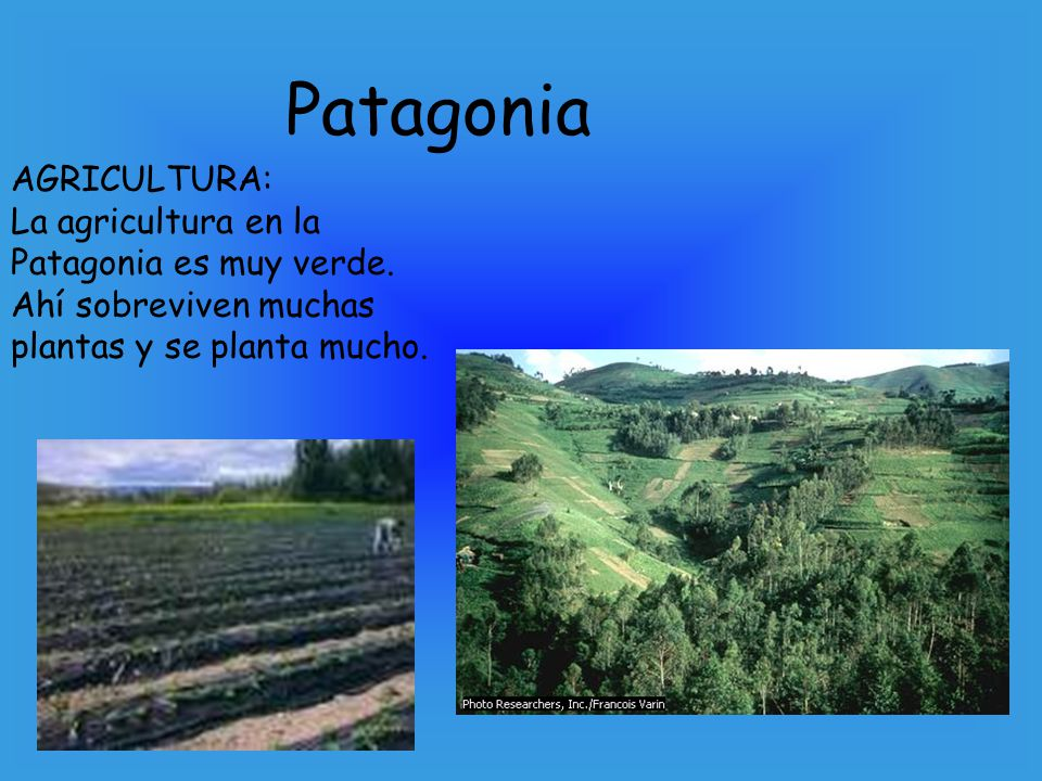 Patagonia AGRICULTURA: