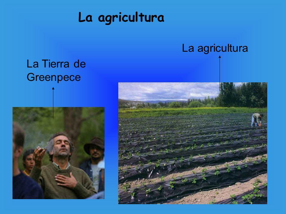 La agricultura La agricultura La Tierra de Greenpece