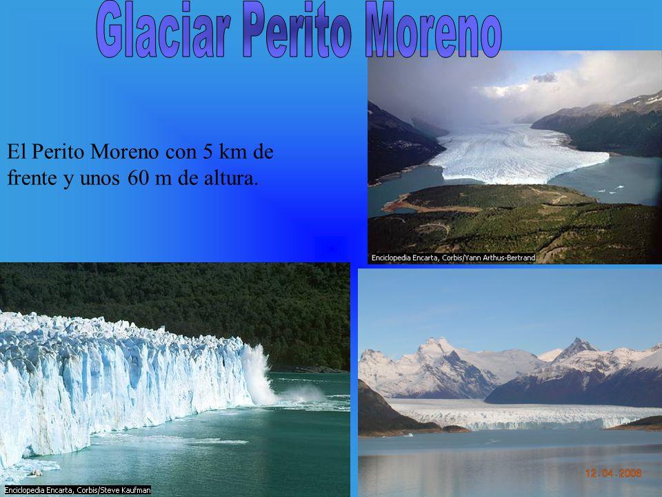 Glaciar Perito Moreno El Perito Moreno con 5 km de frente y unos 60 m de altura.