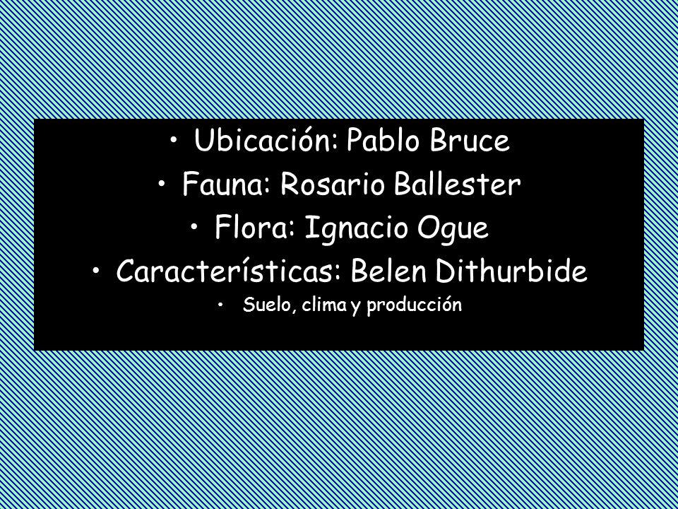Ubicación: Pablo Bruce Fauna: Rosario Ballester Flora: Ignacio Ogue