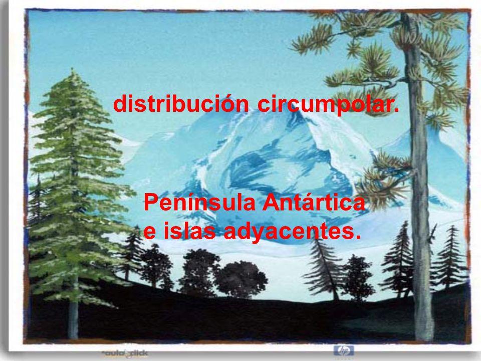 distribución circumpolar.