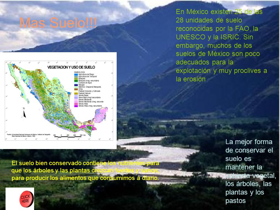 En México existen 25 de las 28 unidades de suelo reconocidas por la FAO, la UNESCO y la ISRIC. Sin embargo, muchos de los suelos de México son poco adecuados para la explotación y muy proclives a la erosión