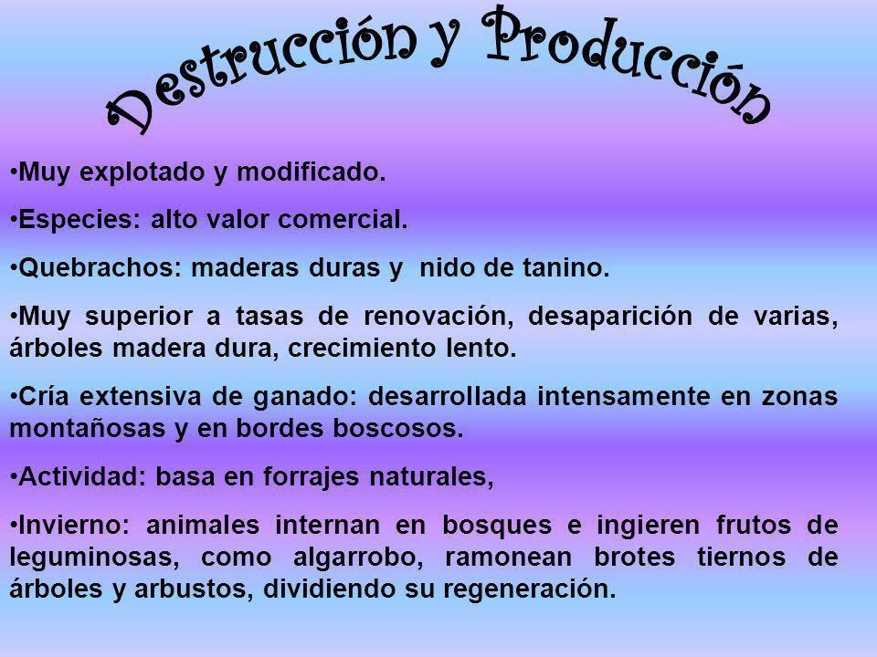 Destrucción y Producción