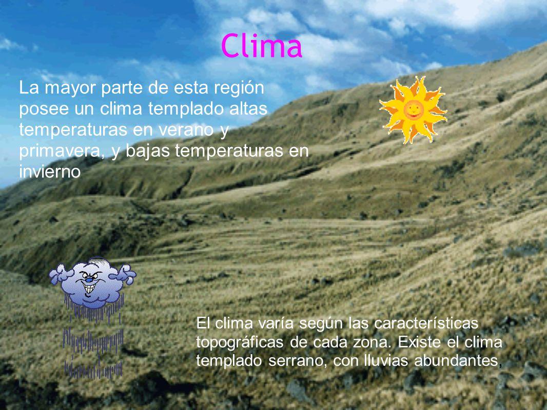Clima La mayor parte de esta región posee un clima templado altas temperaturas en verano y primavera, y bajas temperaturas en invierno.