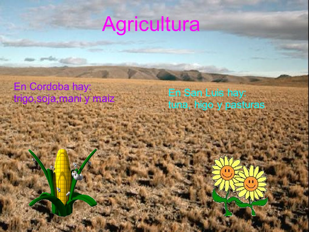 Agricultura En Cordoba hay: trigo,soja,mani y maiz En San Luis hay:
