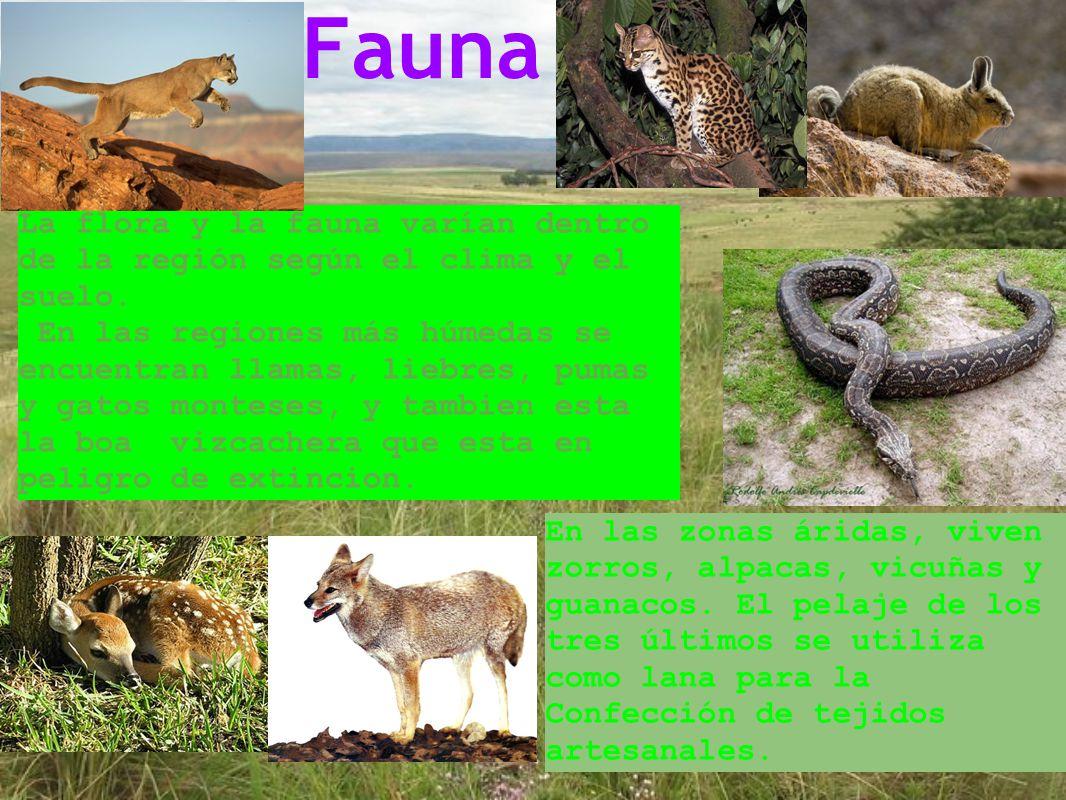 Fauna La flora y la fauna varían dentro de la región según el clima y el suelo.