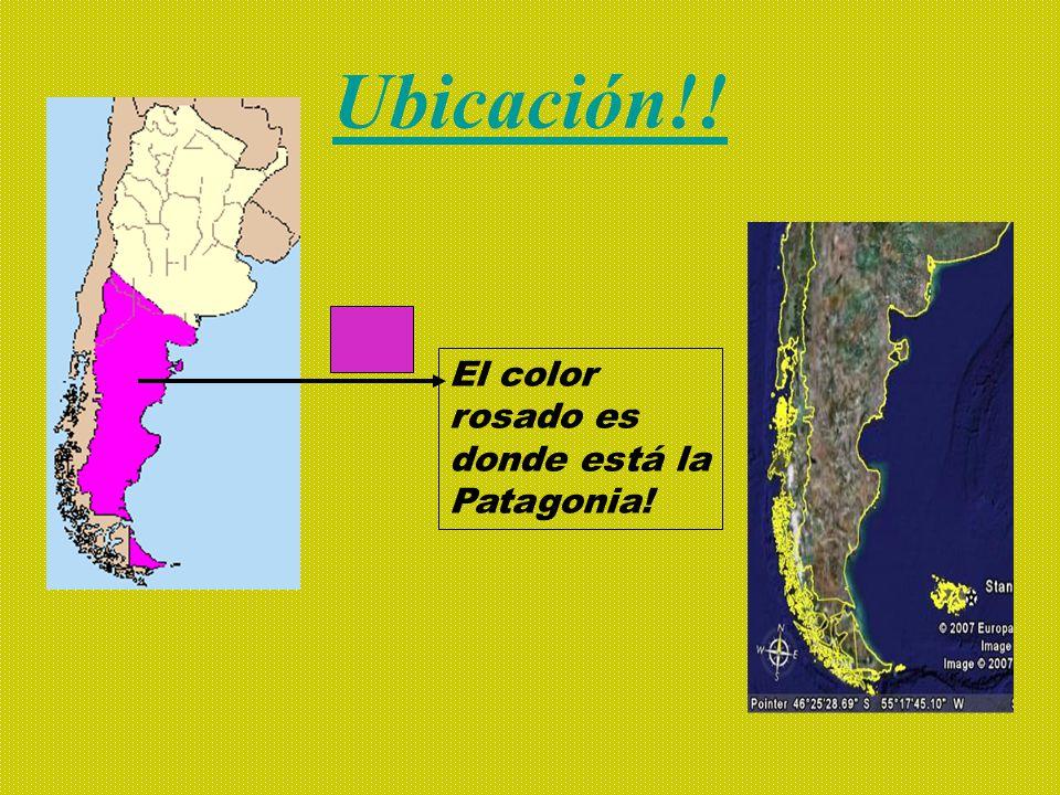 Ubicación!! El color rosado es donde está la Patagonia!