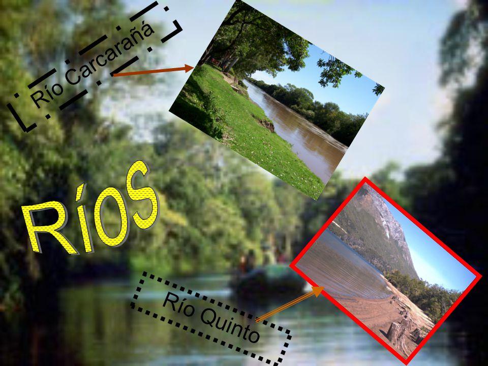 Río Carcarañá Ríos Río Quinto