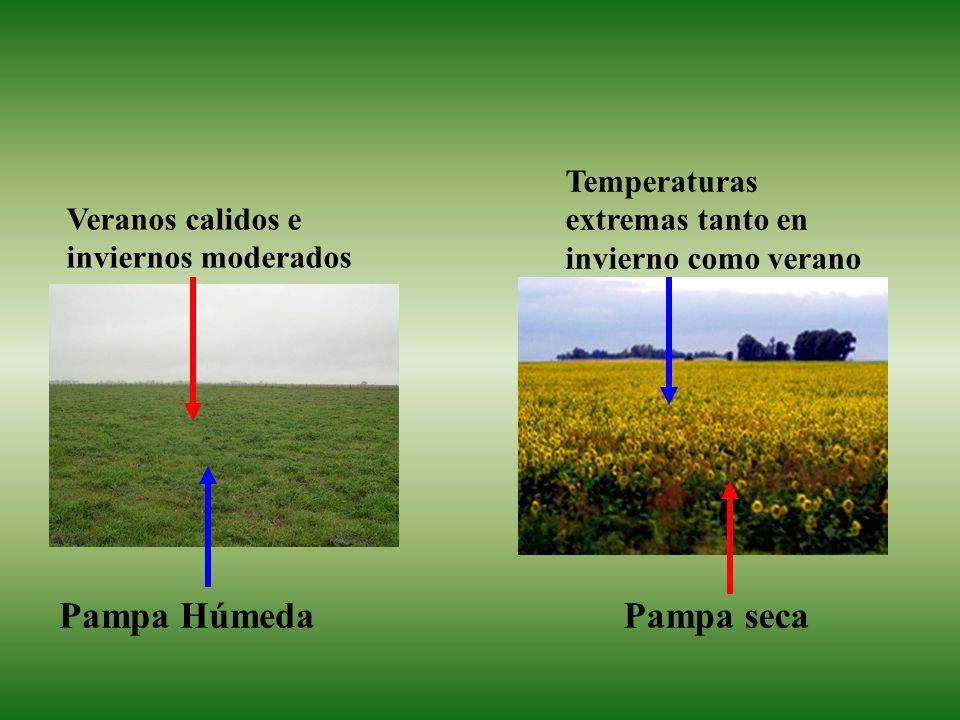 Pampa Húmeda Pampa seca