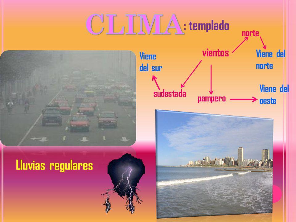 CLIMA : templado Lluvias regulares vientos norte Viene del norte