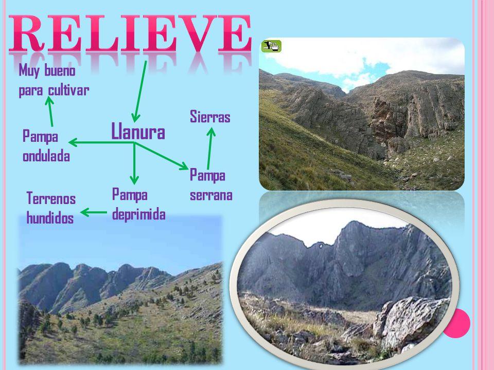 RelievE Llanura Muy bueno para cultivar Sierras Pampa ondulada