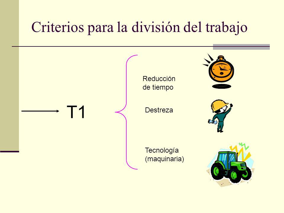 Criterios para la división del trabajo