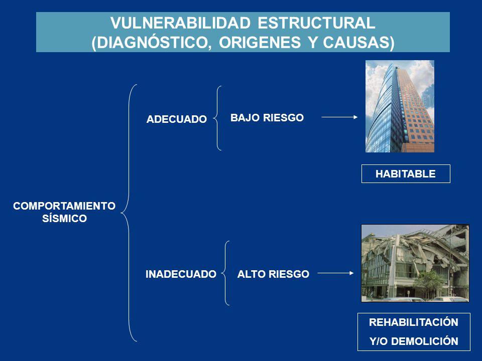 VULNERABILIDAD ESTRUCTURAL (DIAGNÓSTICO, ORIGENES Y CAUSAS)
