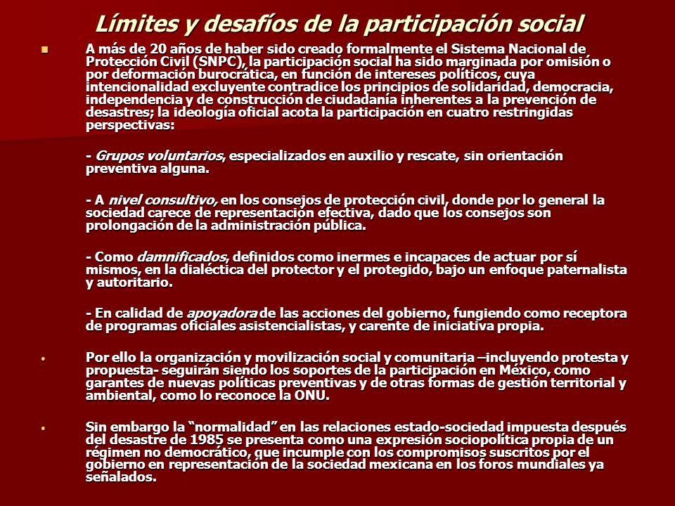 Límites y desafíos de la participación social