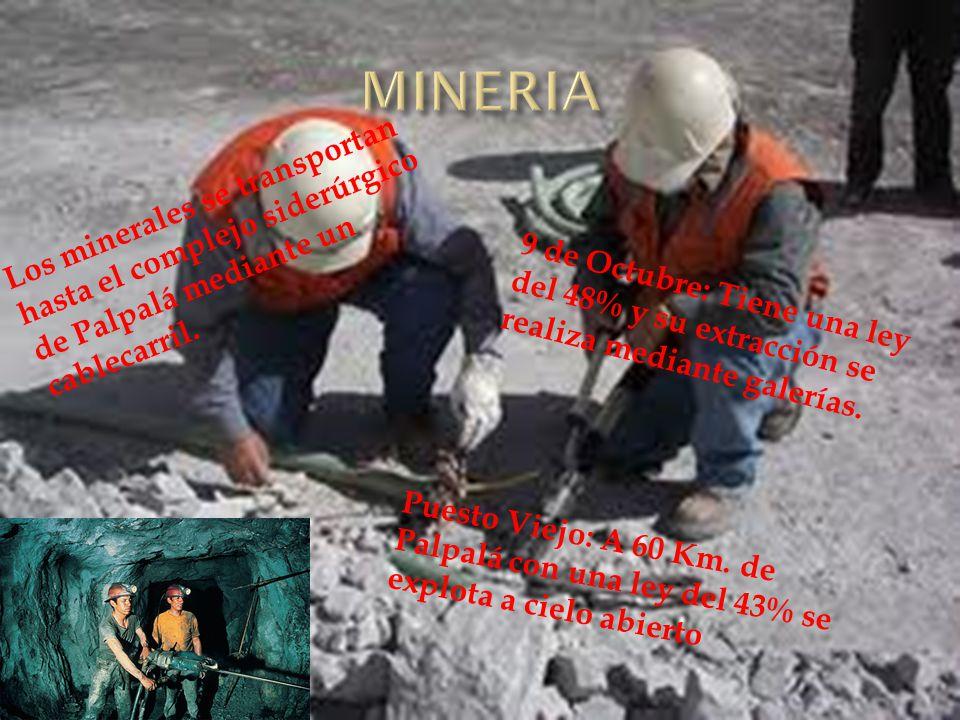MINERIA Los minerales se transportan hasta el complejo siderúrgico de Palpalá mediante un cablecarril.