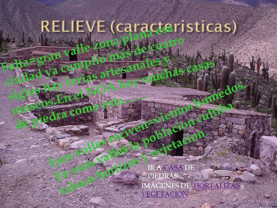 RELIEVE (caracteristicas)