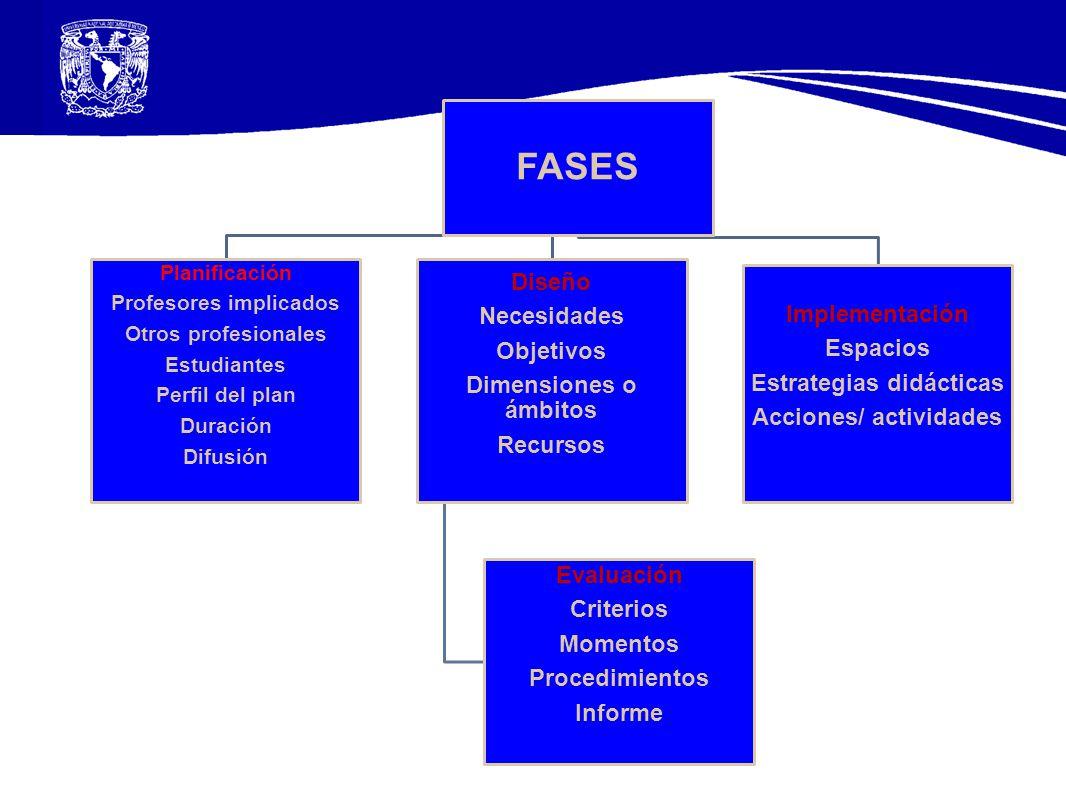 Profesores implicados Estrategias didácticas Acciones/ actividades