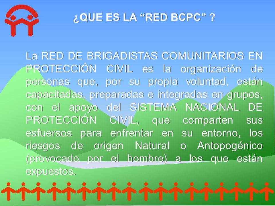 ¿QUE ES LA RED BCPC