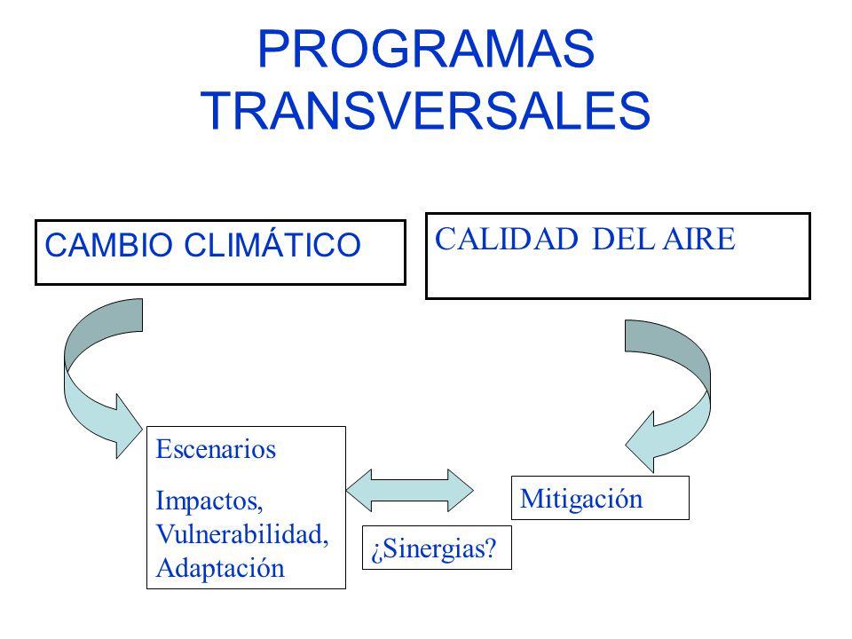 PROGRAMAS TRANSVERSALES