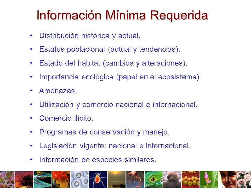 Información Mínima Requerida