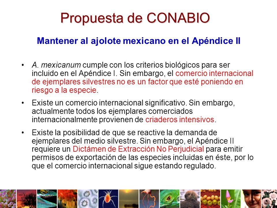 Mantener al ajolote mexicano en el Apéndice II