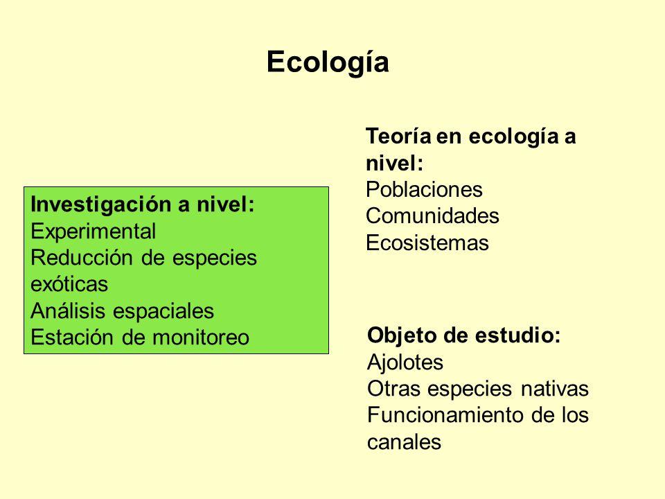 Ecología Teoría en ecología a nivel: Poblaciones Comunidades
