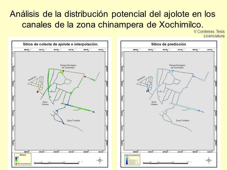 Análisis de la distribución potencial del ajolote en los canales de la zona chinampera de Xochimilco.