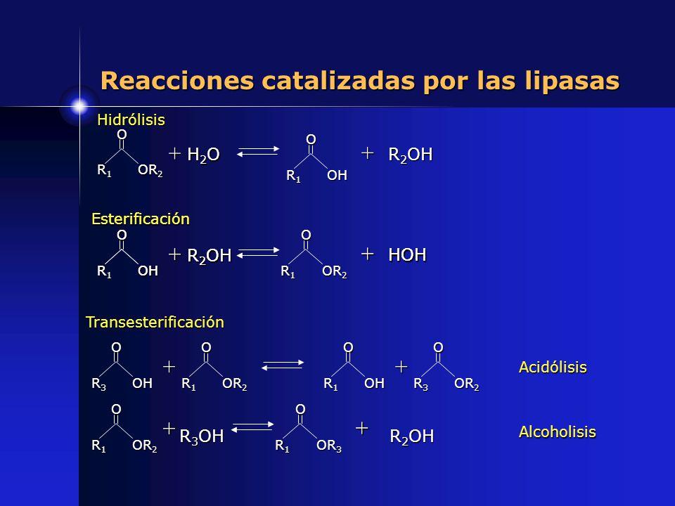 Reacciones catalizadas por las lipasas