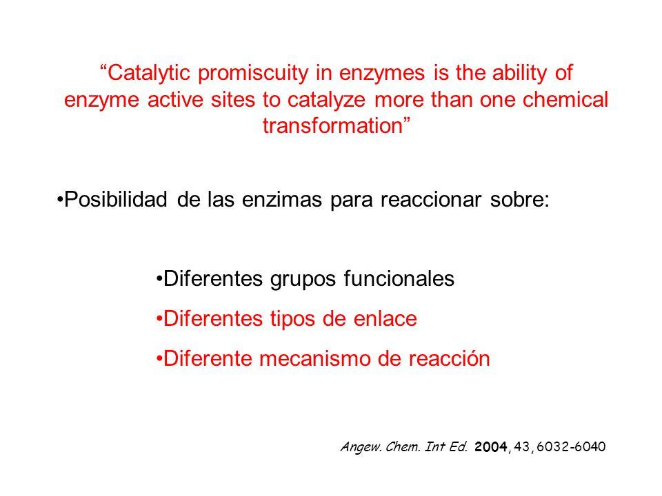 Posibilidad de las enzimas para reaccionar sobre: