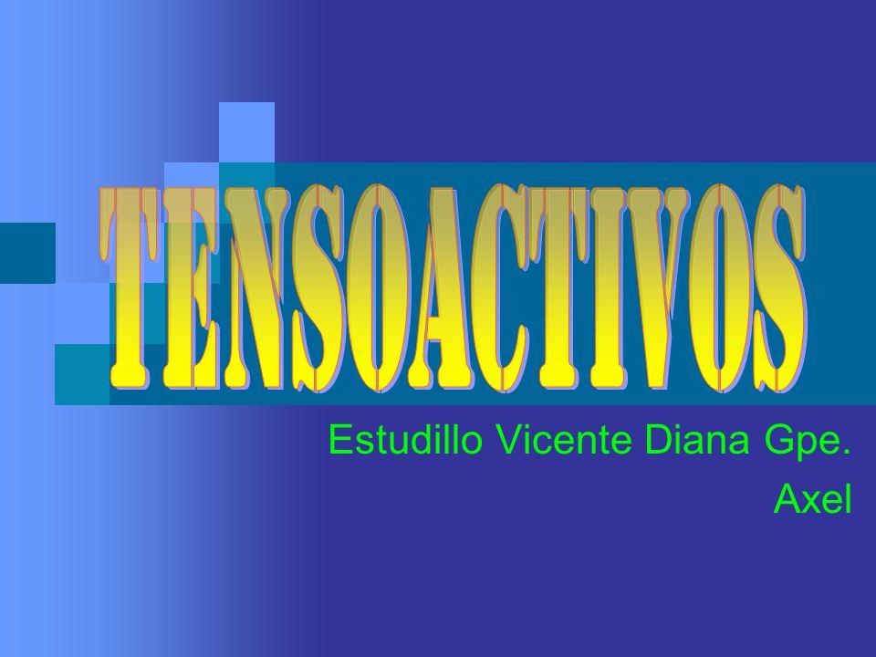 Estudillo Vicente Diana Gpe. Axel