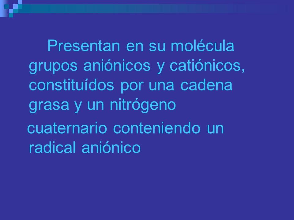 Presentan en su molécula grupos aniónicos y catiónicos, constituídos por una cadena grasa y un nitrógeno