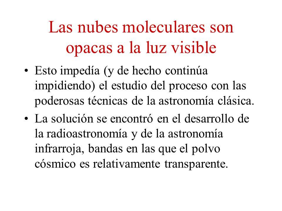 Las nubes moleculares son opacas a la luz visible